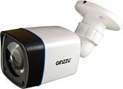 Ginzzu HAB-2032P