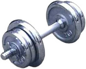 American Fitness гантель хромированная 25 кг