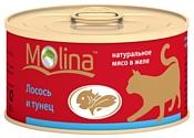 Molina (0.08 кг) 12 шт. Консервы для кошек Лосось и тунец