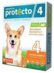 Neoterica капли от блох и клещей Protecto 4 для собак и щенков от 10 до 25 кг
