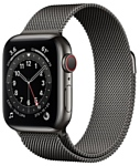 Apple Watch Series 6 GPS + Cellular 40mm Stainless Steel Case with Milanese Loop