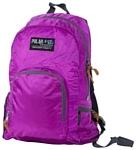 Polar П2102 15.5 фиолетовый