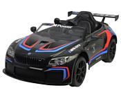 Chi Lok Bo BMW M6 GT3 (черный)