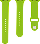 Evolution AW44-S01 для Apple Watch 42/44 мм (green)