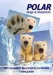 Polar глянцевая A4, 180 г/м2, 100 л (A4G7905)