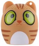 ZDK 3W400 KIDS Cat