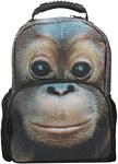 Hatber Trend Line Orangutan