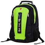 POLAR 983049 зеленый