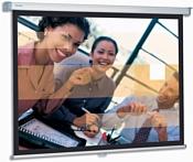 Projecta SlimScreen 160x160 (10200062)