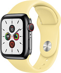Apple Watch Series 5 40mm GPS + Cellular Stainless Steel Case with Sport Band