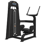 Bronze Gym LD-9018