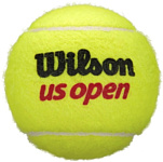 Wilson US Open WRT106200 (3 шт)