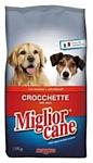 Miglior Cane Croquettes Beef