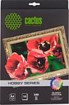 CACTUS Хлопковый холст A4 340 г/кв.м. 10 листов (CS-СGA426010)