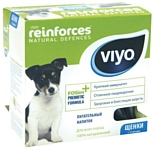 Viyo Reinforces Dog Puppy