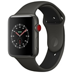 Apple Watch Edition Series 3 42mm with Sport Band