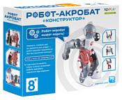 ND Play На элементах питания 265616 Робот-акробат