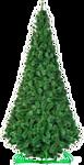 Green Trees Сосна Рублевская 3 м