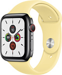 Apple Watch Series 5 44mm GPS + Cellular Stainless Steel Case with Sport Band