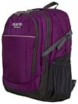 POLAR П2319 (фиолетовый)