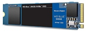 Western Digital WD Blue SN550 500 GB (WDS500G2B0C)
