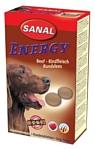 Sanal Energy