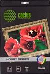 CACTUS Хлопковый холст A4 300 г/кв.м. 10 листов (CS-СA426010)