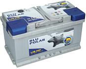 Baren Polar Blu 7905631 (85Ah)