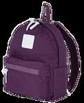Polar 17202 (фиолетовый)