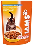 Iams Cat Pouch Adult with Rich in Chicken in Gravy (0.1 кг) 12 шт.