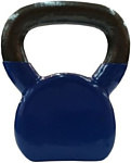 Protrain DB3077-6 6 кг