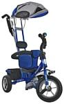 Roadweller Trike Blue