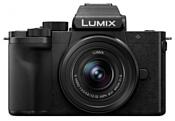 Panasonic Lumix G DC-G100 Kit