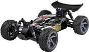 Iron Track Spino 4WD RTR