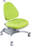 Fun Desk SST4 (зеленый)