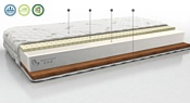 Территория сна Concept 08 80x186-200