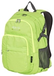 POLAR П1991 (зеленый)