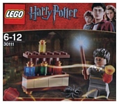 LEGO Harry Potter 30111 Зельеварение