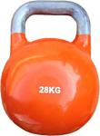 Protrain DB2180-28 28 кг