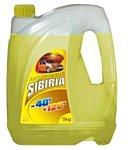 Sibiria G-11 -40 желтый 5л