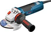 Bosch GWS 19-125 CIE (60179P002)