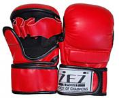 Zez MMA