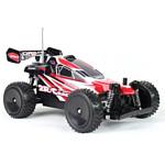 Create Toys Aoshangmei Company Buggy 4WD RTR