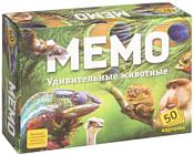Нескучные игры Мемо - Удивительные животные