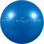 Go Fit Pro Stability Ball 55 см