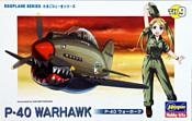 Hasegawa P-40 Warhawk