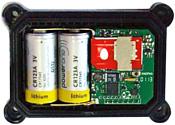 SOBR Chip 12R
