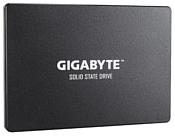 GIGABYTE 1000 GB (GP-GSTFS31100TNTD)