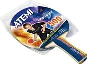 Atemi Training 500