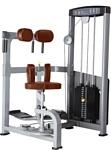 Bronze Gym D-011